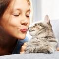 猫とキスをする女性