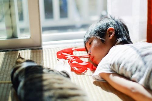 猫と寝る子供