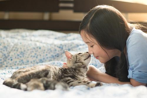猫と鼻をくっつける