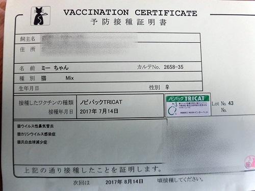 予防接種の料金表