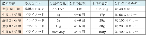 子猫のエサの適正量と回数